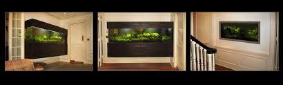 Aquarium For Home Decoration Custom Aquariums Albany Ny Custom Aquariums Saratoga Ny