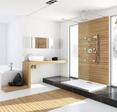 Narrow Wall Mirror Bathroom Fantastic Walk In Shower With Wooden Accent Wall Idea