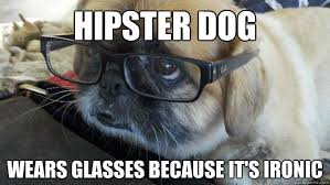 Hipster Dog Meme - hipster dog wears glasses because it s ironic hipster dog