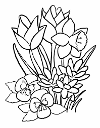 coloring pictures flowers