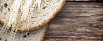 neri u0027s bakery products port chester ny