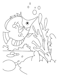 fish hunting dish coloring pages download free fish hunting