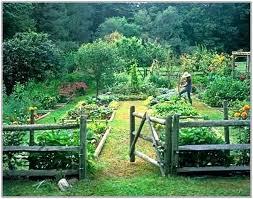 best garden design the perfect vegetable garden best vegetable garden layout plan