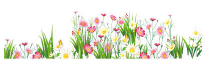 flower clip flower png jpg grass ground with pink flowers png clipart