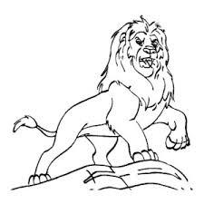 lion coloring color luna