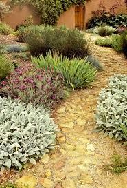 garden ideas garden edging ideas mediterranean landscape plants