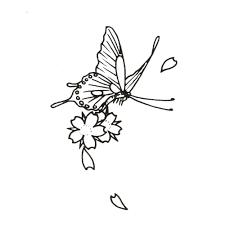 butterfly flower designs book butterfly book