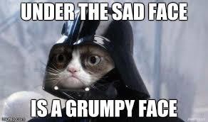 Grumpy Face Meme - grumpy cat star wars meme imgflip