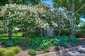Home And Yard Design by 28 Home And Yard Design Front Yard Fountain Design Online