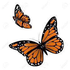 monarch butterfly clip art u2013 clipart free download