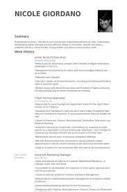 Account Executive Job Description Resume by Account Executive Job Description For Resume