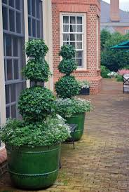 Topiary Planters - fabulous toparies curb appeal pinterest ivy gardens and
