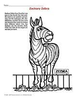 53 best homeschool zebras images on pinterest zebras african