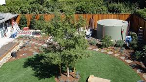 native and adapted landscape plants rainwater is expected to rank the highest in consumer demand