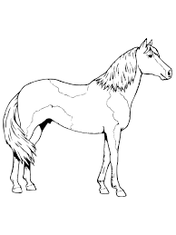 horse color sheet for kids activity shelter