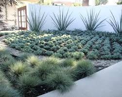 backyard desert landscaping plans backyard desert landscape
