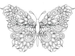 detailed butterfly coloring pages for adults detailed butterfly coloring pages beautiful butterfly coloring pages