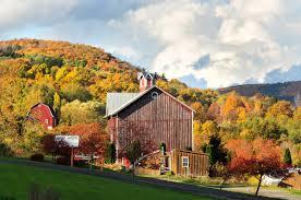 New York State Fall Foliage Map by Fall Foliage