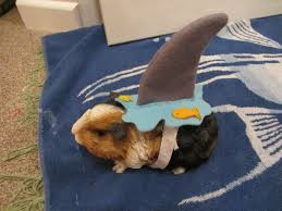 homemade dog halloween costume ideas clothing trends