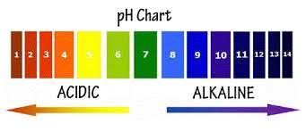 swimming pool ph u0026 total alkalinity close cousins