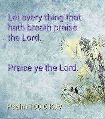 best 25 psalm 150 ideas on forever bethel scripture