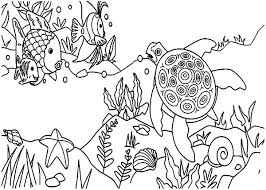 coral reef fish and sea turtle colouring page colouring tube