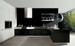 Where To Buy Kitchen Cabinets Black Kitchen Cabinet Doors Gallery Glass Door Interior Doors
