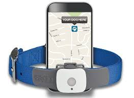 Gadgets For Pets The Top 10 Gadgets For Dogs U2013 Gearnova