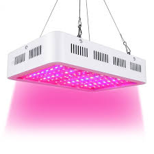 top led grow lights best led grow light 1000w double chip full spectrum for indoor