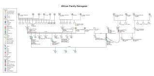 9 best images of genogram write up family genogram template