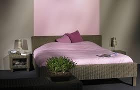mur de couleur dans une chambre couleur de mur pour une chambre maison design bahbe com