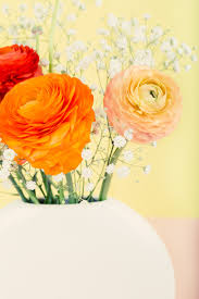 orange and white wallpapers orange pink and red ranunculus and white babies breath arrangement