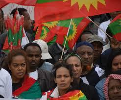 Oromo Flag Diaspora Speaks For Deliberately Silenced Oromos Ethiopian