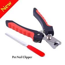 1pcs pet nail clippers cutter ai s cats pig birds guiea claws