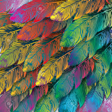 Exotic Colors by Seamless Background Of Exotic Colorful Feathers Close Up Vector