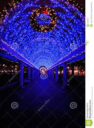 blue christmas lights christmas lights decoration