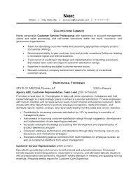 resume professional summary exles resume summary exles lidazayiflama info