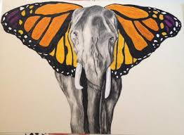 on sickdrawings another butterfly elephant