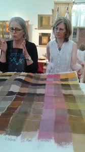natural dye study group gather in asheville nc natural dye