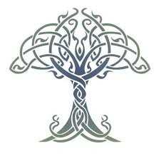 tree of life history and research celtic tree of life and how it
