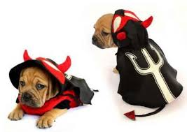 Fork Halloween Costume Angel Costumes Dogs Angel Dog Costumes Devil Dog Costume