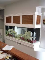 Fish Tank Reception Desk Custom Aquariums And Fish Tanks Installed In Tampa Florida