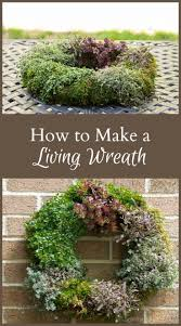 524 best hearth vine images on pinterest hearth gardening how to make a living wreath
