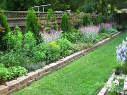 garden awesome backyard fence design ideas chain link fence