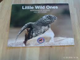 ones defenders of wildlife 2016 2017 calendar