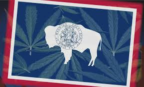 Wyoming Travel Talk images Governor candidates talk marijuana png