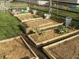 starting a raised bed vegetable garden gardening ideas
