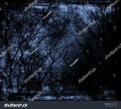 halloween stock background spooky forest dead trees mystic halloween stock photo 566088586