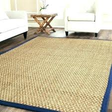 Pottery Barn Rug Runners Pottery Barn Runner Rug Mesmerizing Pottery Barn Rug Runners