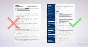 data scientist resume data scientist resume sle and complete guide 20 exles
